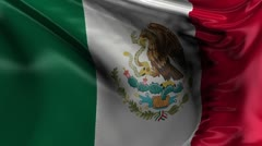 National Flag of Mexico Stock Footage