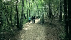 Walking in the bush Stock Footage