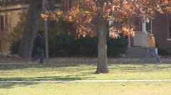 Stock Footage College Students in Fall - female wlaks towards camera on cell - stock footage