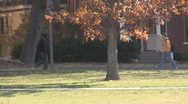 Stock Footage College Students in Fall - female wlaks towards camera on cell Stock Footage