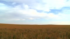 Vast open plains stretch out to the horizon. Stock Footage