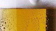Stock Video Footage of Beer being poured. Foam sliding down side of beer glass