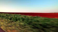 Drive-by of a plowed field in Israel. Stock Footage
