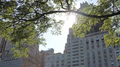 Buildings and tree, Central Park, New York, USA Stock Footage