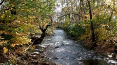 Stream In Fall Foliage Stock Footage