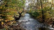 Stock Video Footage of Stream In Fall Foliage
