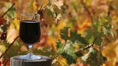Drink Wine Vines Stock Footage