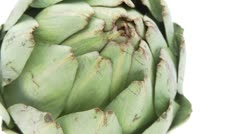 Closeup of single artichoke on white background Stock Footage
