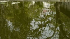 Trees and house reflected in pool,rippled,like a mirror. Stock Footage
