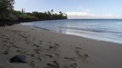 Hawaiian beach Stock Footage