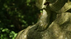 Nunhead Gothic Victorian cemetery, London. tilt up to dead flower Stock Footage