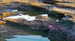 Tide pools at Dor Beach Stock Footage