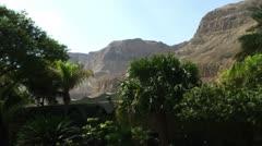 panorama of Ein Gedi Kibbutz oasis - stock footage
