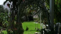 Panorama of an oasis near the Dead Sea Stock Footage