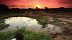 Group of boys playing at village water hole at sunset in Kenya. Stock Footage