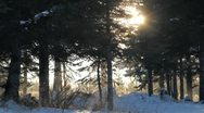 Stock Video Footage of Sunburst and blowing snow