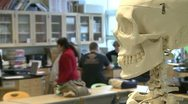 Skeleton in Science class with middle students in the back ground (2 of 2) Stock Footage