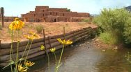 Stock Video Footage of Yellow flowers near the Taos pueblo in New Mexico.