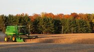 Stock Video Footage of Harvesting Soybeans