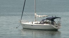 Sailboat moored in the harbor - stock footage
