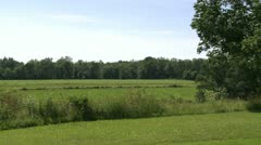 Looking out over field (1 of 4) Stock Footage