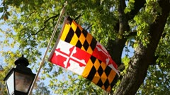 Maryland Flag - stock footage