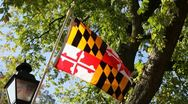 Stock Video Footage of Maryland Flag