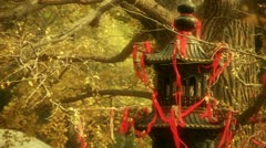 Stock Video Footage of Incense burner and ginkgo tree in wind,monuments,antiques,culture.