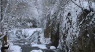Roughlock Rapids tilt to trees Stock Footage