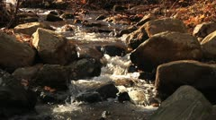 Slow Motion Stream in woods, loop-able - stock footage