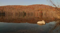 Rock in lake and forest hill - stock footage