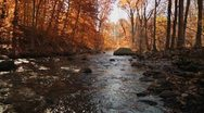 Stock Video Footage of Big stream surrounded by autumn trees