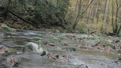 downstream view mountain stream - stock footage