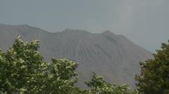 Sakurajima Volcano Looms Behind Trees Stock Footage