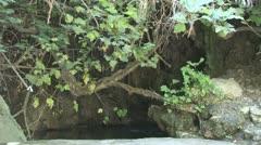 Bath of Aphrodite, Cyprus Stock Footage