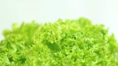 Fresh Green Lettuce Stock Footage
