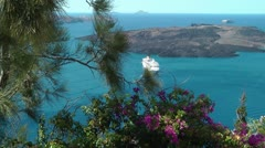 Flowers and Ship background - Santorini Stock Footage