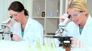 Female Medical Researchers Using Microscopes Stock Footage
