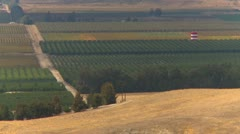 Agriculture, high above San Joaquin valley fields, #2 fruit and nut trees Stock Footage