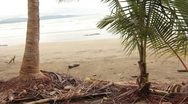Pan up of beach to the tops of the palm trees Stock Footage
