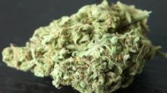 Marijuana HD Stock Footage