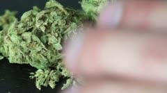 Marijuana on the Table HD Stock Footage