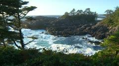 Amphitrite Point, waves crashing on rocky shore, #3 Stock Footage