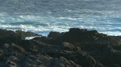 Amphitrite Point, waves crashing on rocky shore, #14 Stock Footage