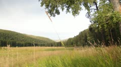 Plains tree forest mountains nature Stock Footage