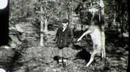 Hunters with Dead Deer in the Woods HUNTING 1940s Vintage Film Home Movie 1318 Stock Footage