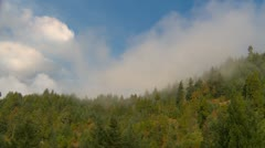 Time-lapse clouds over mixed forest, Oregon, autumn Stock Footage