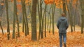 The lonely man walks in the picturesque autumn forest Footage