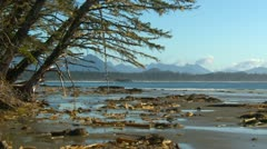 Long beach, early morning, gentle surf, #7, Vancouver Island Stock Footage