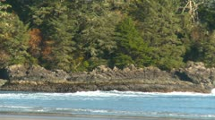 Long beach, early morning, gentle surf, #5, Vancouver Island Stock Footage